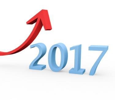 Salariu minim 2017